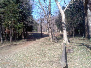 4_お小倉の森