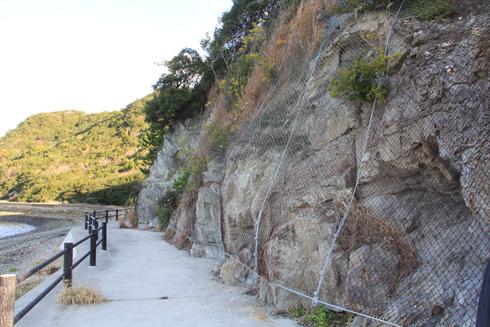 鹿浦越のランプロファイヤ岩脈2020-5