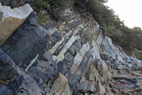 鹿浦越のランプロファイヤ岩脈2020-8