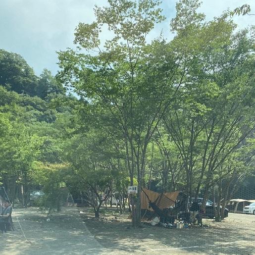 新戸キャンプ場サイト全体図_5