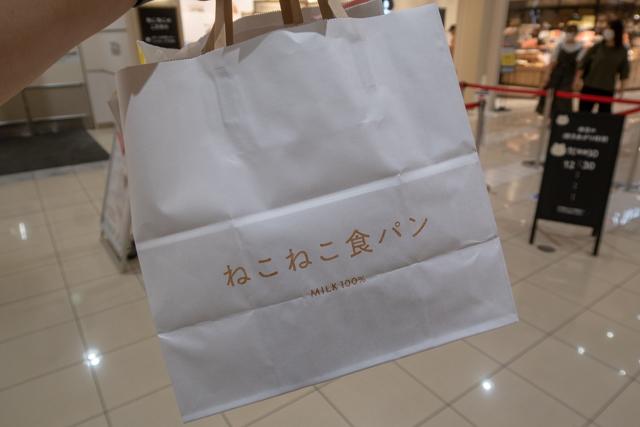 ねこねこ(11)