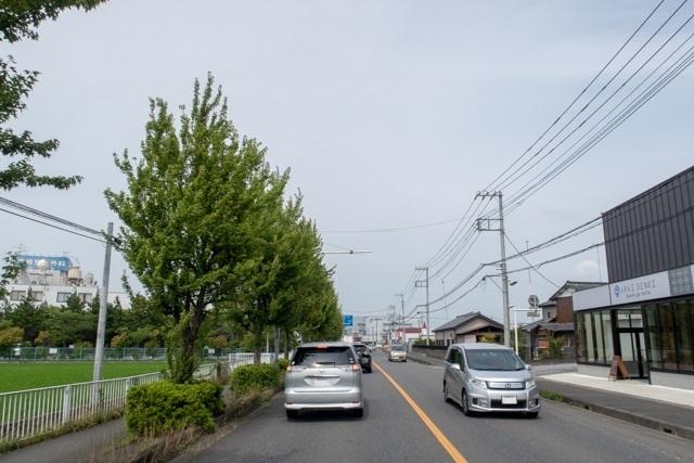 新井屋(13)