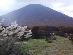 191024秋の高原