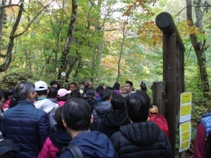 191024中国人観光客