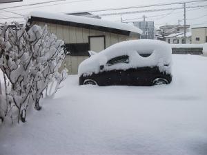 191206雪積もる