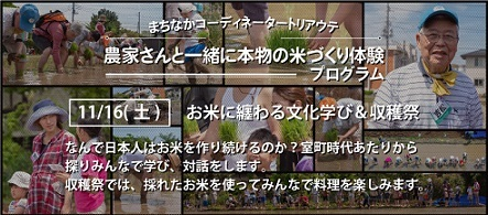 11FB_TOPm.jpg