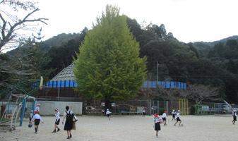 191030 藤河小学校