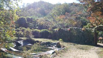 191106 妹背の庭