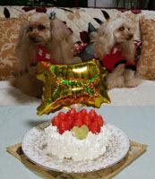 200102 R10歳祝cake残念編