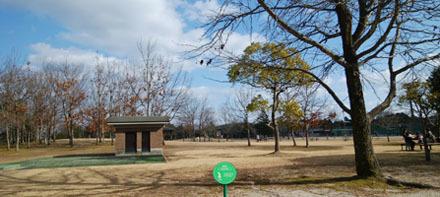 200113 運動公園c