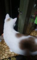 200118 Mina3