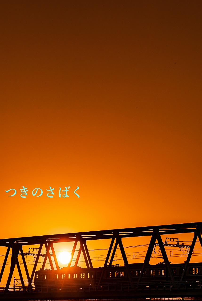 DSC01162f9504_1.jpg