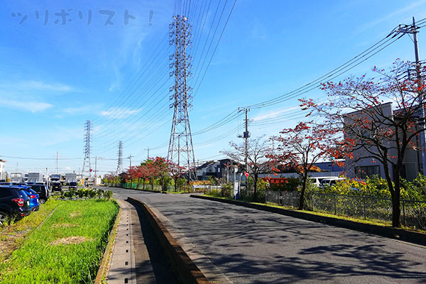 出羽堀001