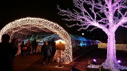 江戸桜トンネル