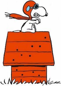 Snoopy-The-Red-Baron-Peanuts-Iron-On.jpg