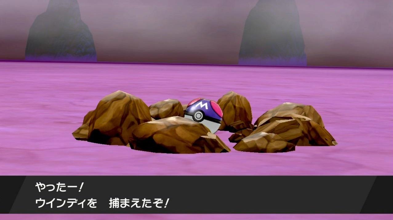 ポケモン 剣 盾 ネット ボール