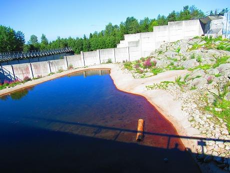 ホッキョクグマ池1