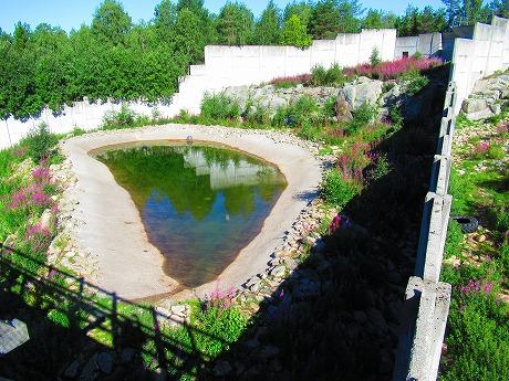 ホッキョクグマ池2