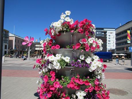 中央広場前の花