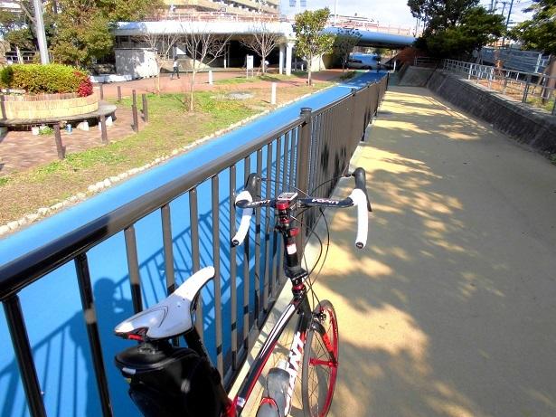 3 大野川緑陰道路20200104