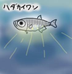 hadakaiwasi-2.jpg