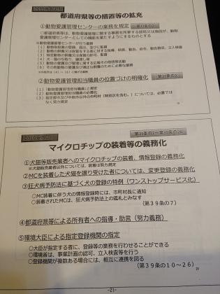 DSC_4450.jpg