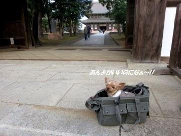200101(6).jpg