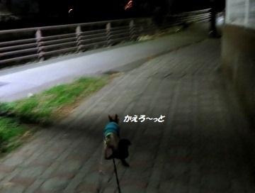 200106(05).jpg