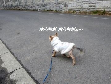 200307(5).jpg