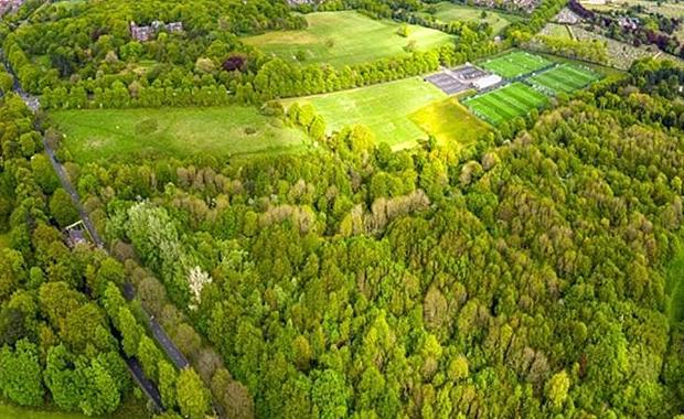The George Harrison Woodland Walk