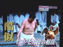 愛媛一人相撲