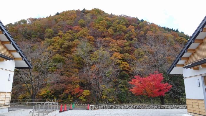 九頭竜ダム (12)