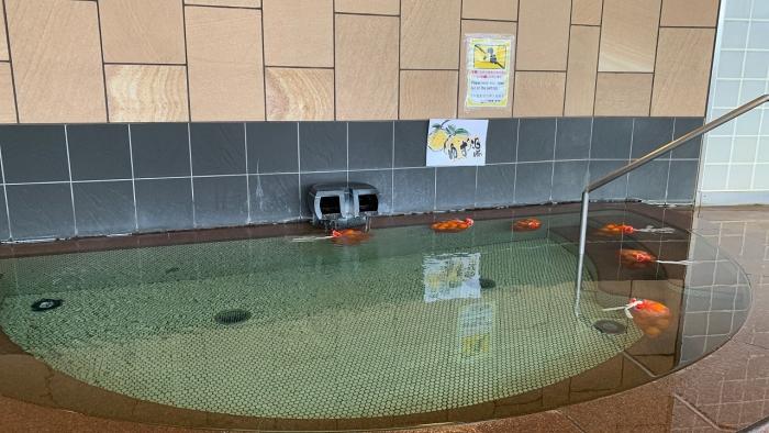 かんぽ部屋・風呂 (13)