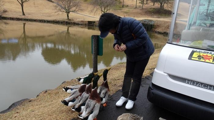 ゴルフ (9)