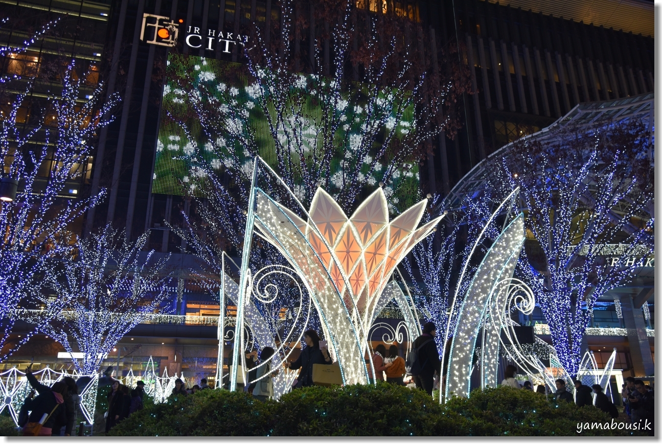 Happy Christmas 2019! 光の街・博多 8