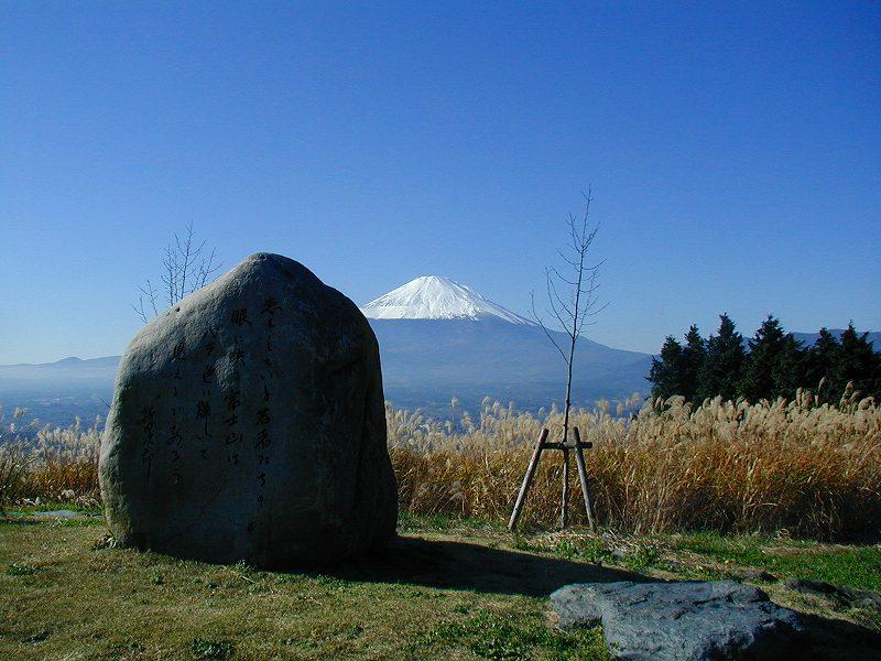 asaigara1.jpg