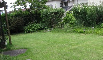 芝刈りIMG_0115