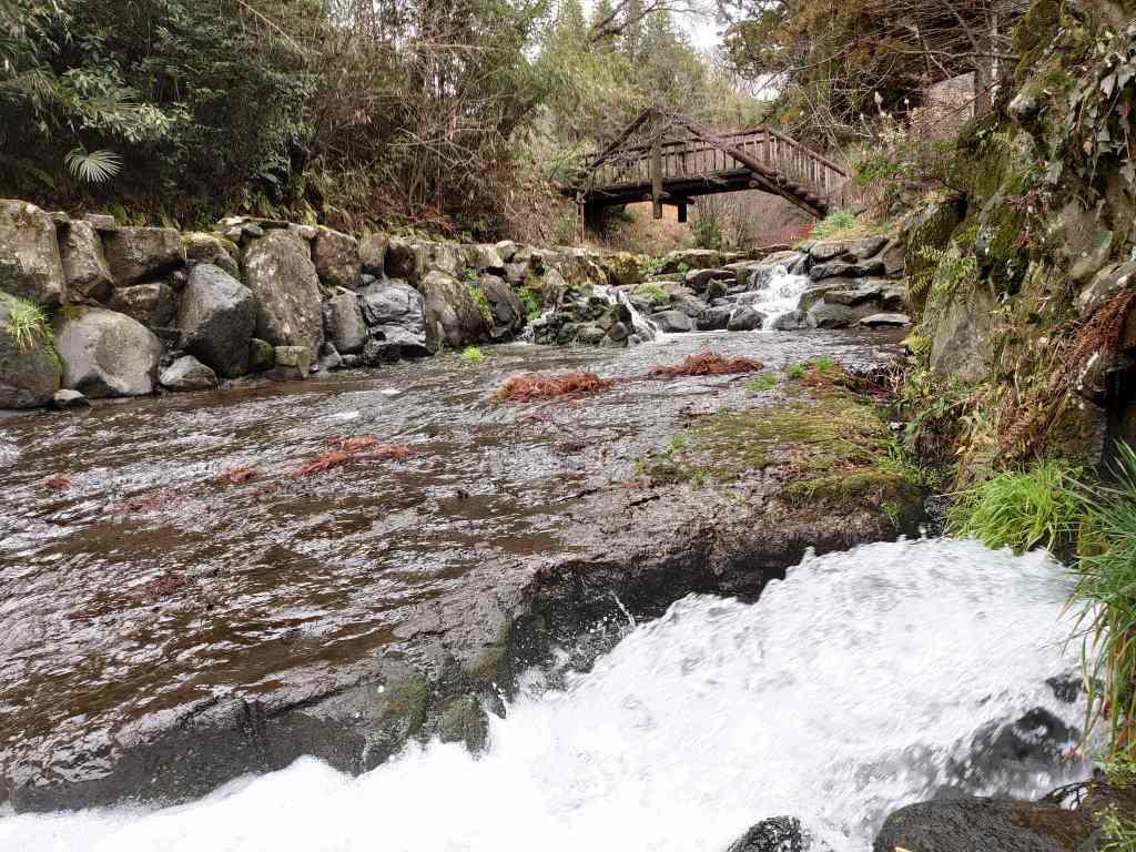 「白川水源(熊本県南阿蘇村)」名水が生まれる南阿蘇を巡る