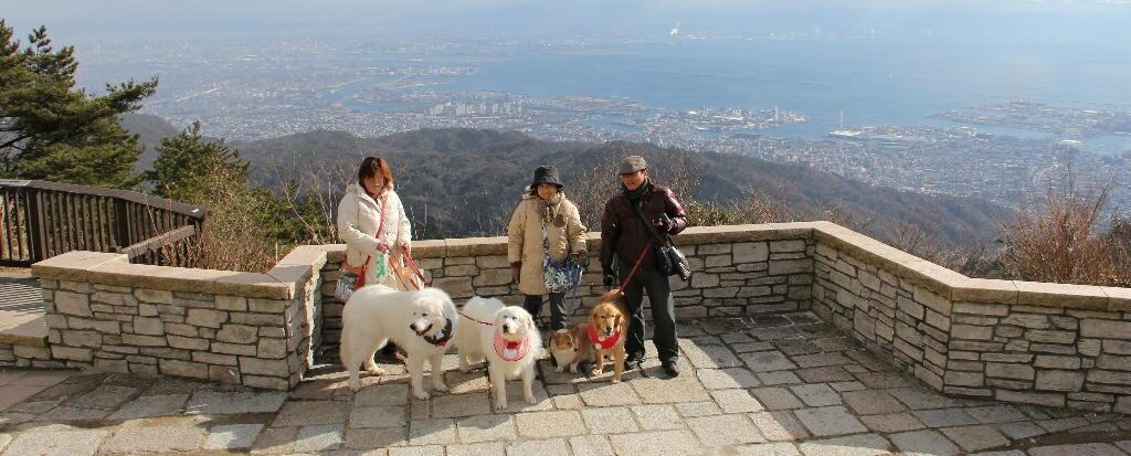 2011年1226六甲山