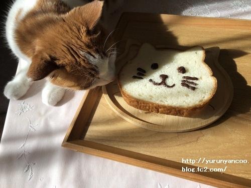 ブログNo.1706(美味しくて可愛いねこねこ食パン)8