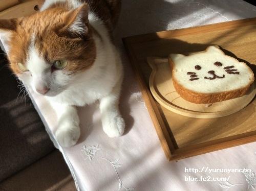 ブログNo.1706(美味しくて可愛いねこねこ食パン)10