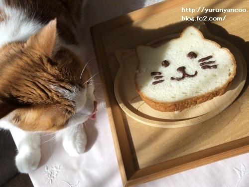 ブログNo.1706(美味しくて可愛いねこねこ食パン)12